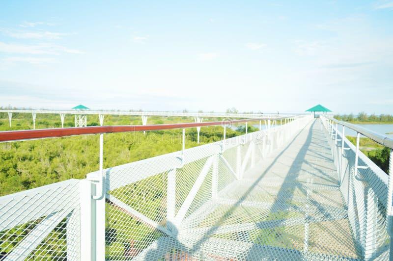 De brug van de de boomhemel van de hemelleurder skywalk royalty-vrije stock foto