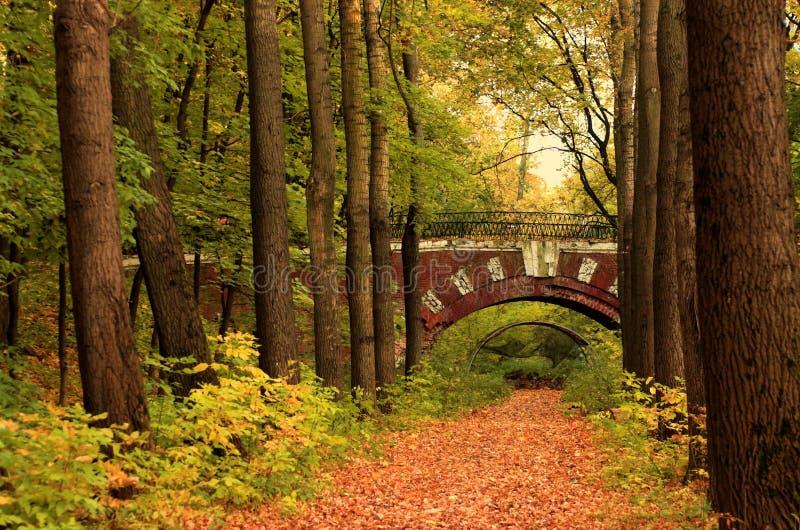 De brug van de baksteen in het de herfstbos royalty-vrije stock fotografie