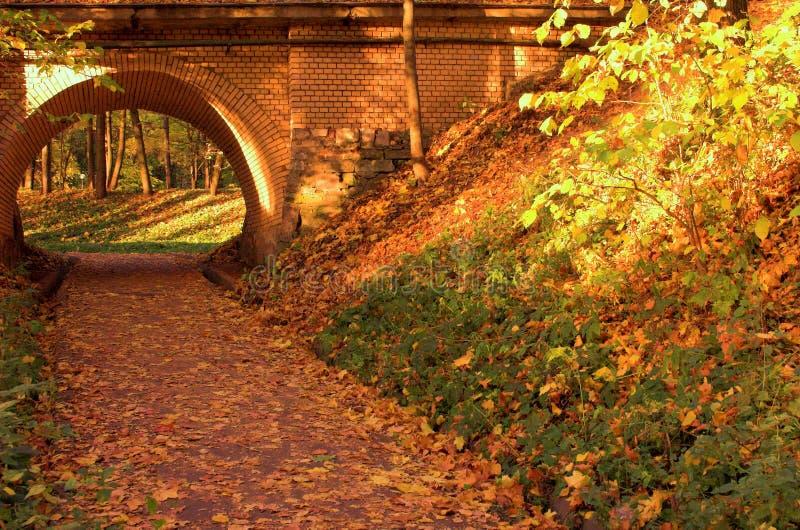 De brug van de baksteen in het de herfstbos in Rusland royalty-vrije stock afbeelding