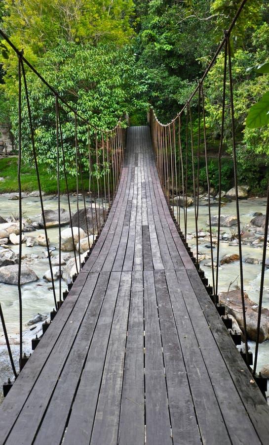 De brug van de kabel stock foto's
