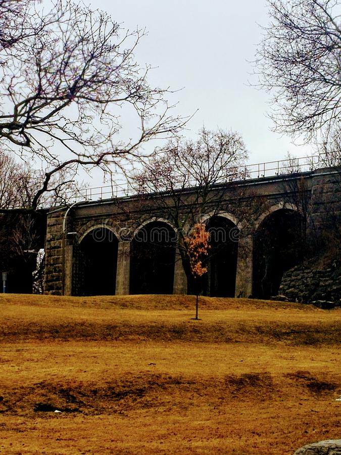 De brug van de Napaneetrein stock fotografie