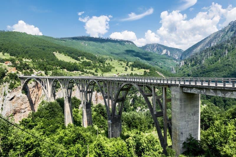 De brug van Dzhurdzhevich over de rivier Tara montenegro stock foto's