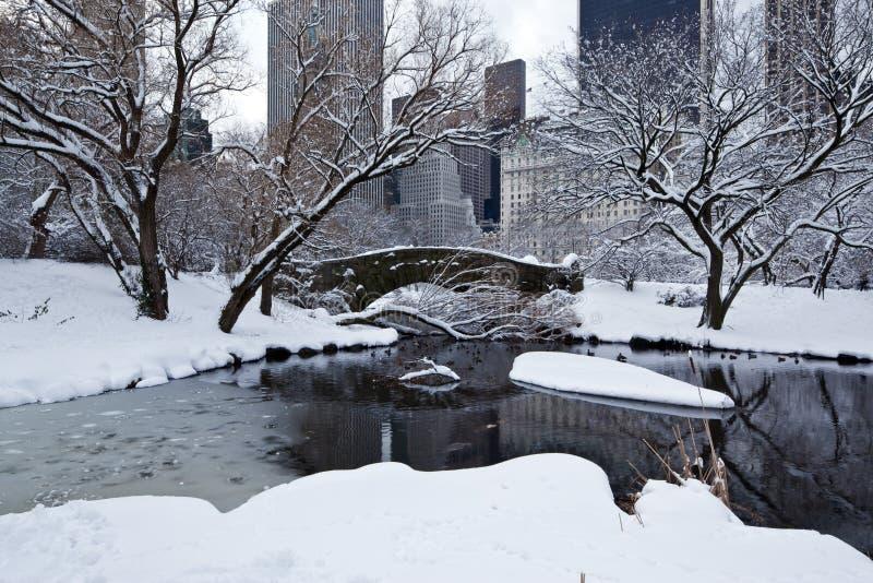 De brug van Gapstow in de winter stock afbeeldingen