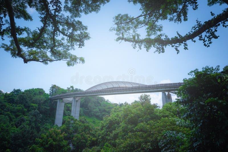 De brug van de Hendersongolf op blauwe hemelachtergrond bij dag in Singa royalty-vrije stock foto's