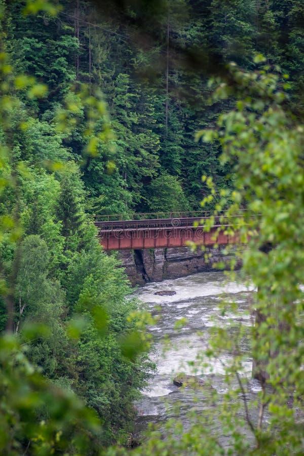 De brug van de spoorweg Weergeven door dicht struikgewas stock afbeeldingen