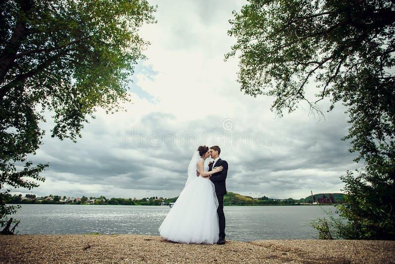 De bruid en de bruidegom bevinden zich op de kust van de vijver en bekijken elkaar Mooi portret van gemiddelde lengte stock fotografie