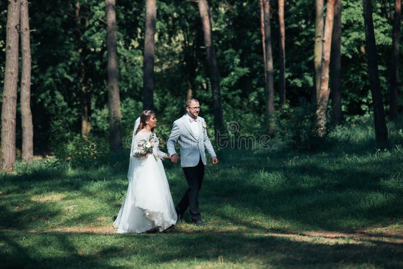 De bruid en de bruidegom lopen in het hout op hun huwelijksdag stock foto