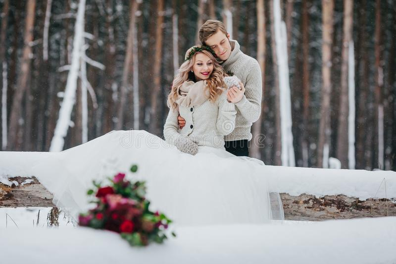 De bruid en de bruidegom zitten op login het de winter bosclose-up Het huwelijk van de winter Zachte nadruk op het paar royalty-vrije stock foto