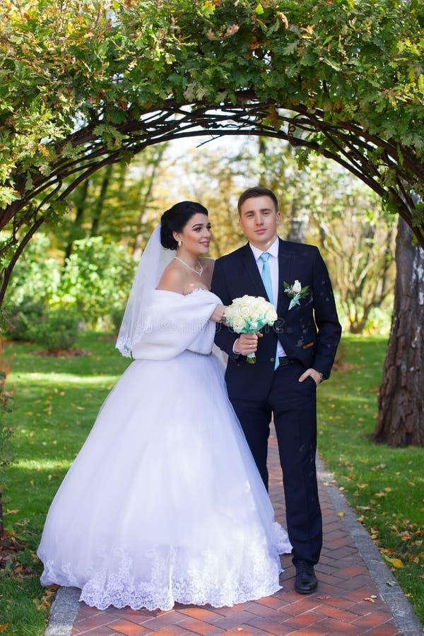 De bruid heeft teder de bruidegom omhelst royalty-vrije stock afbeeldingen