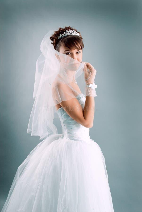 De bruid kleedde zich in kleding van het elegantie de witte huwelijk royalty-vrije stock fotografie