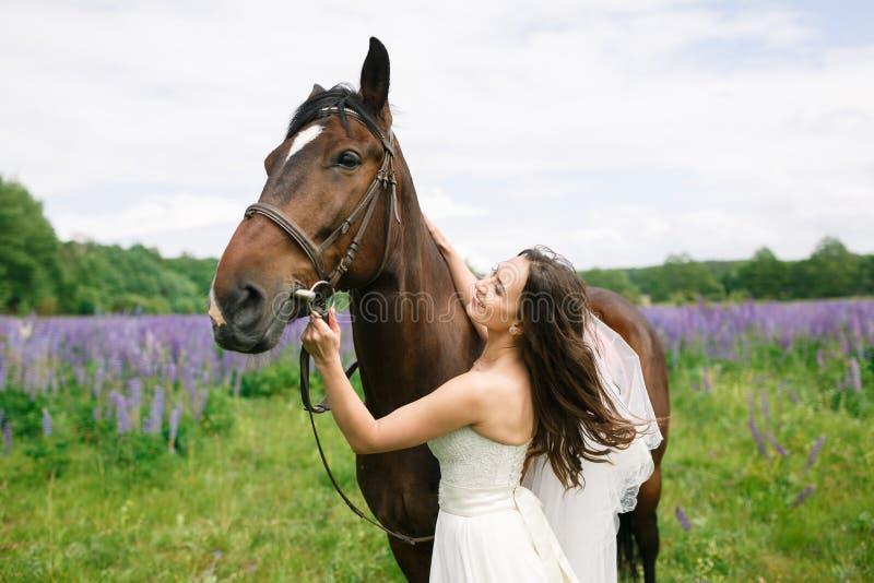 De bruid met paard op het gebied royalty-vrije stock foto's
