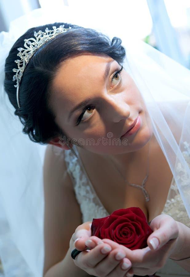De bruid met rood nam toe stock fotografie