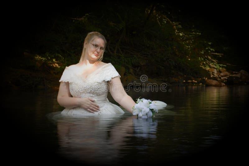 De Bruid van de kreek royalty-vrije stock afbeelding