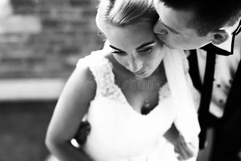 De bruid van Fiancekussen tactvol in het voorhoofd royalty-vrije stock foto's