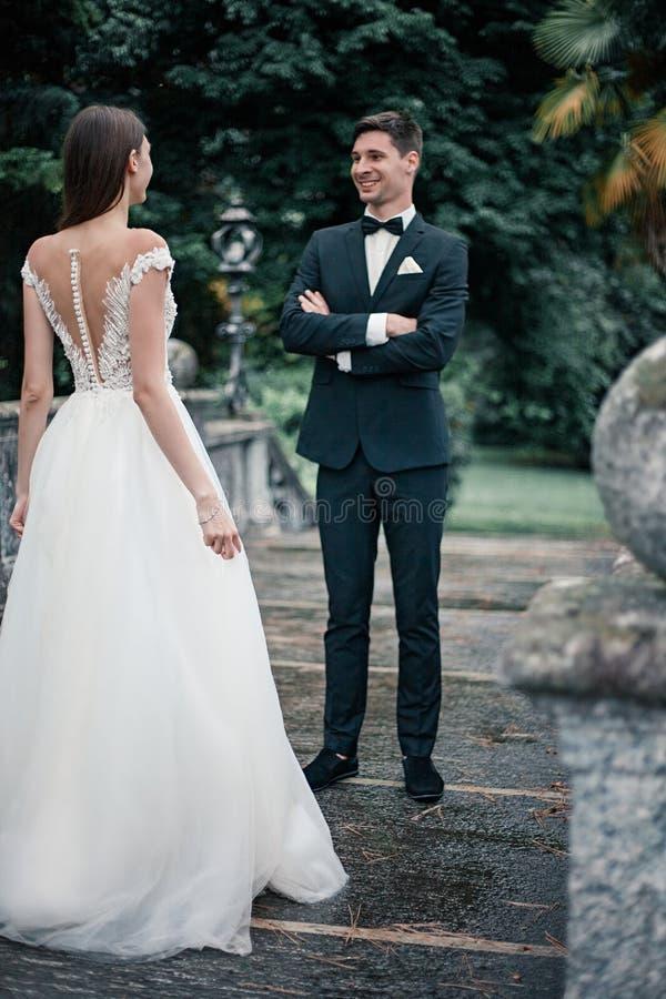 De bruidegom bekijkt de bruid in het park stock foto's