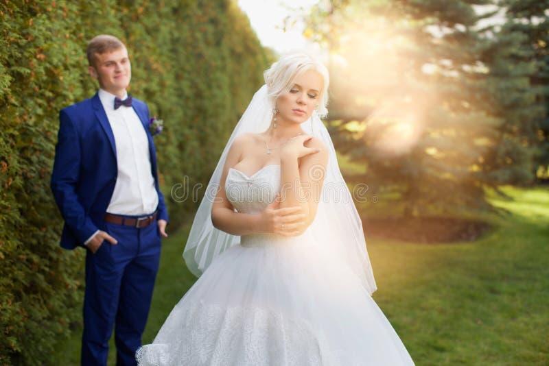 De bruidegom bekijkt teder zijn bruid in het park voor een gang stock fotografie