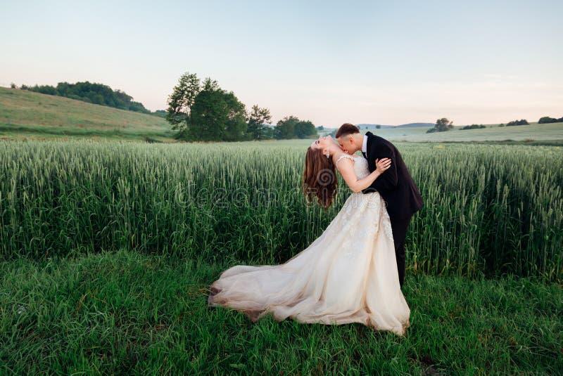 De bruidegom buigt over bruid en kust haar borst royalty-vrije stock foto