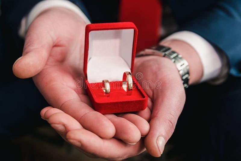 De bruidegom houdt gouden trouwringen in een rode fluweeldoos royalty-vrije stock foto