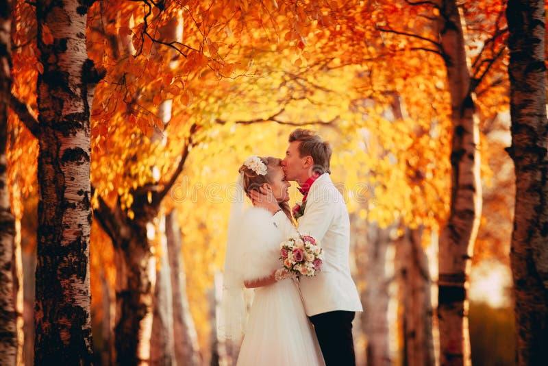 De bruidegom kust de bruid centrale samenstelling royalty-vrije stock foto