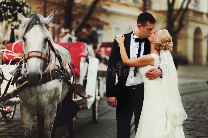 De bruidegom kust een bruid achter een vervoer royalty-vrije stock fotografie