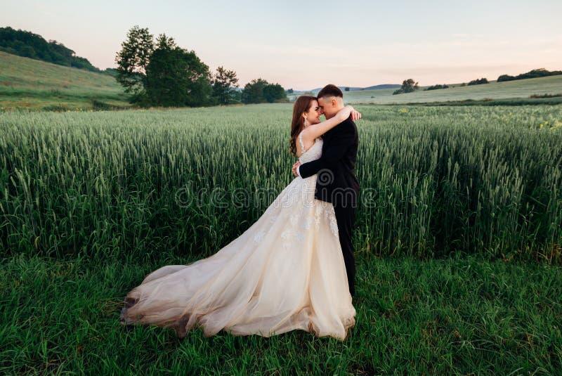 De bruidegom ligt zijn handen op gevoelige bride& x27; s taille stock afbeeldingen