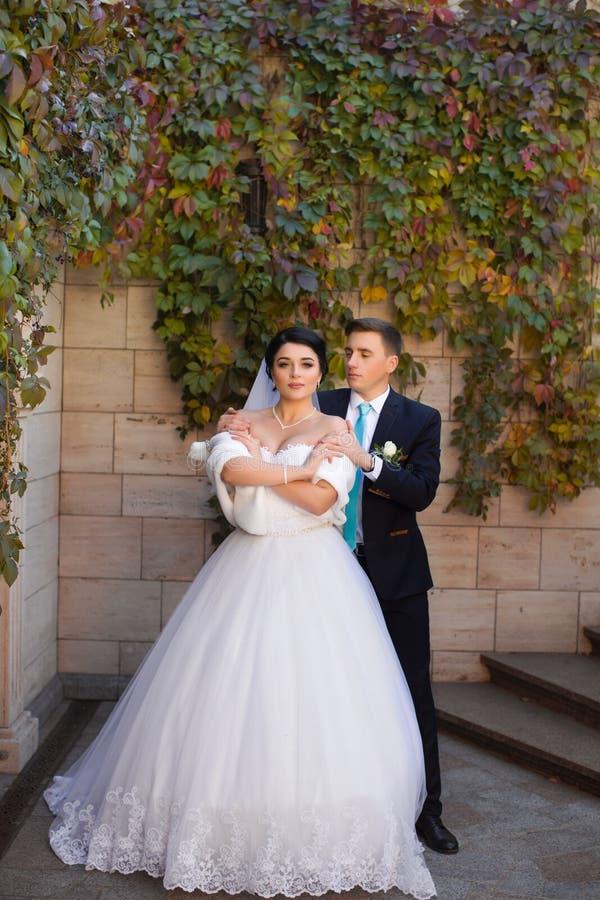 De bruidegom omhelste teder de bruid door de schouders royalty-vrije stock foto's