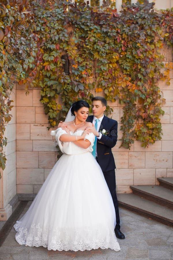 De bruidegom omhelste teder de bruid door de schouders royalty-vrije stock foto