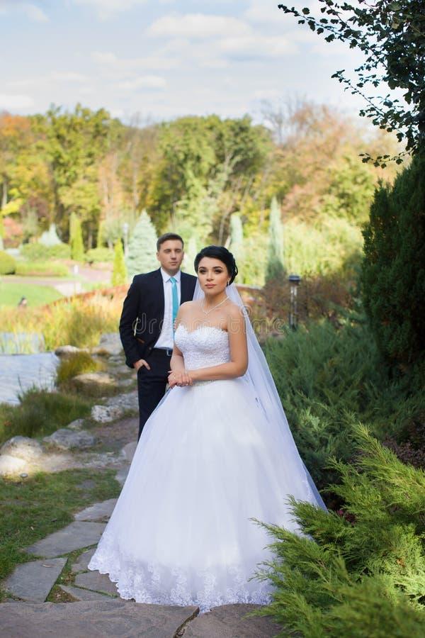 De bruidegom omhelste teder de bruid in het de zomerpark stock foto