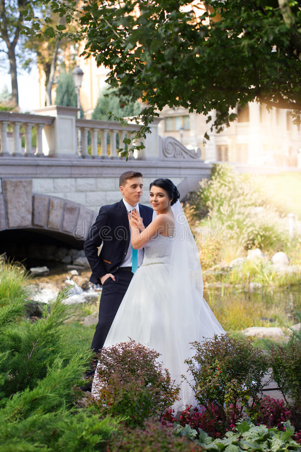 De bruidegom omhelste teder de bruid in het de zomerpark royalty-vrije stock foto
