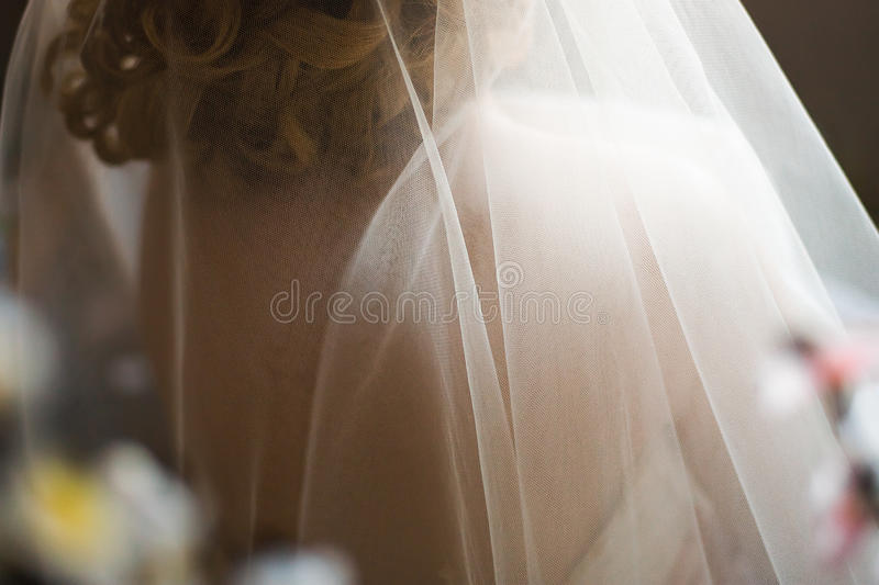 De bruidssluier van het huwelijk royalty-vrije stock afbeelding