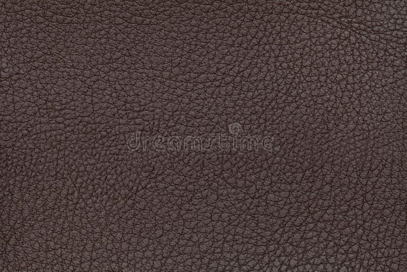 De bruine Achtergrond van het Leer Brede die Hoeklens door Lens GLB in het Midden wordt behandeld Reptiel huid stock foto