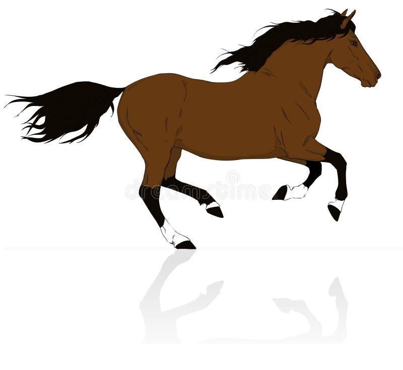 De bruine galop van de paardlooppas royalty-vrije illustratie
