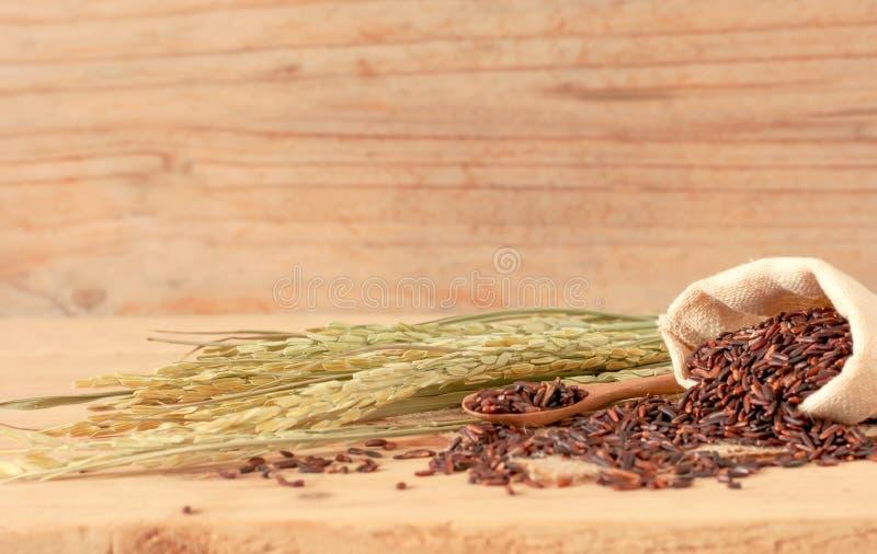 de bruine ruwe rijst in zakzak met droge rijstinstallatie op houten t royalty-vrije stock foto's