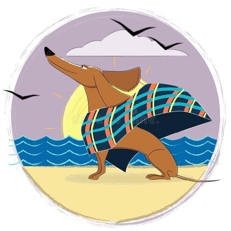De bruine zitting van de Tekkelhond op een zandstrand en het bekijken het overzees stock fotografie