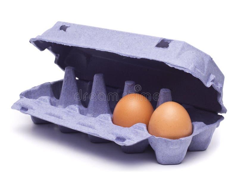De bruna äggen i äggask arkivbild
