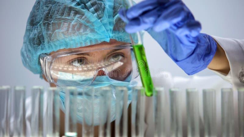 De buis van de onderzoekersholding met groene vloeibare, organische schoonheidsmiddelenproductie, biologie stock foto's