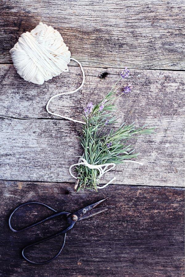 De Bundel van de lavendel royalty-vrije stock afbeelding