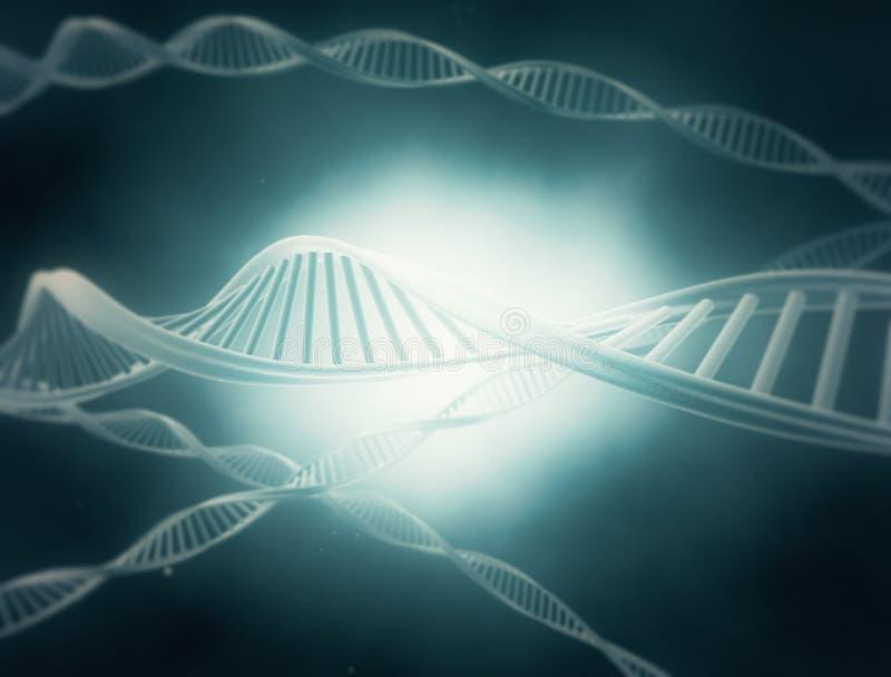 De Bundels van DNA stock illustratie