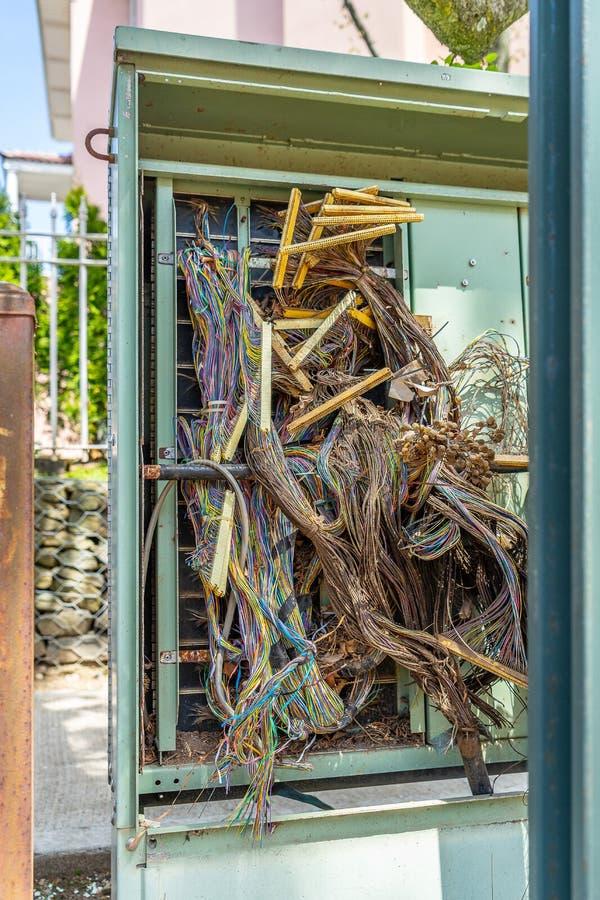 De bundels van multicolored draden strengelden met elkaar in het rek van de ruimte van de datacentrumserver ineen stock foto's