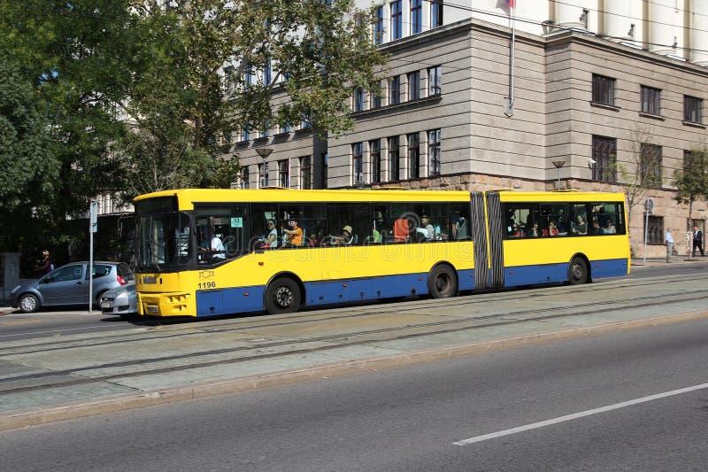 De bus van Belgrado stock afbeeldingen