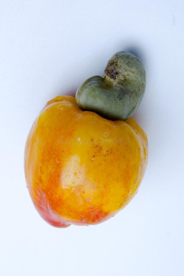 DE CACHOU IS EEN TROPISCH FRUIT stock foto's