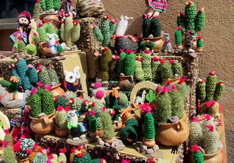 De cactus van de de herinneringswol van Zuid-Amerika royalty-vrije stock foto