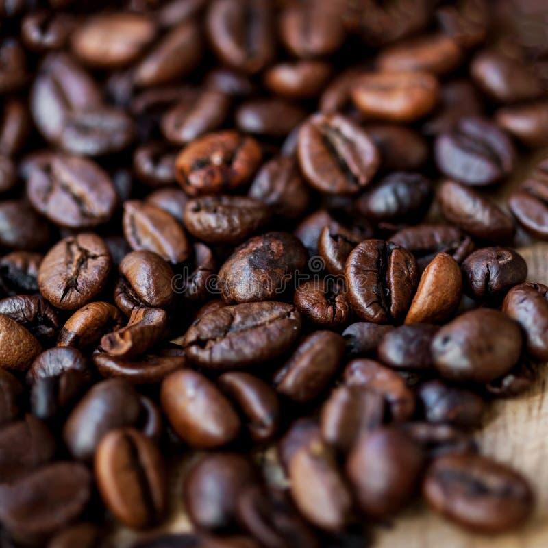 De Cafeïne van koffiebonen roosterde Bruine dichte omhooggaand van het Espressobehang stock foto