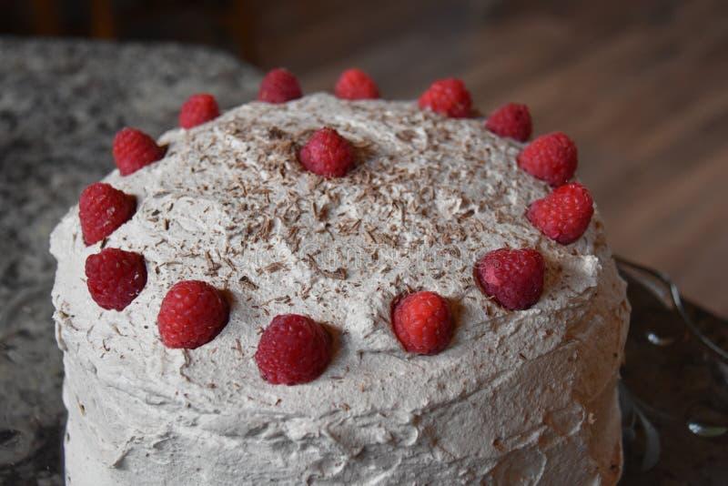 De Cake van de chocolade met Frambozen stock afbeelding