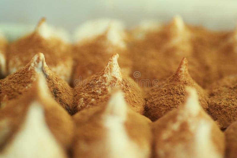 De Cake van het Roomijs van Tiramisu stock foto