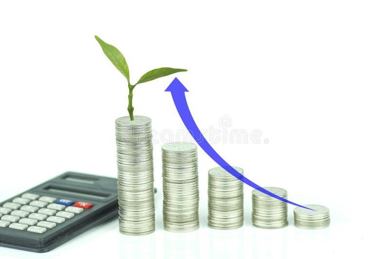 De calculator, kleine boom groeit en stapelde van muntstukken met pijl omhoog op witte achtergrond, concept in de groei, stock fotografie