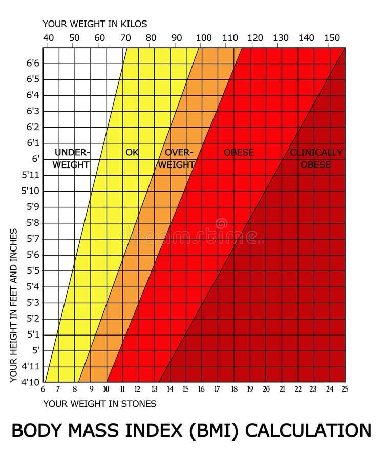 De calculator van de de massaindex BMI van het lichaam