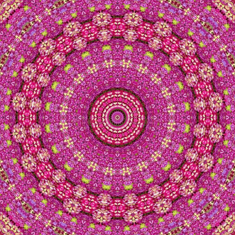 De Caleidoscoop van de hydrangea hortensia vector illustratie