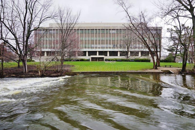 De campus van de Universiteit van de Staat van Michigan stock foto's