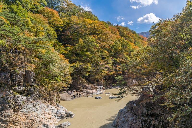 De canion Nikko Japan van de Ryuyokloof stock afbeelding
